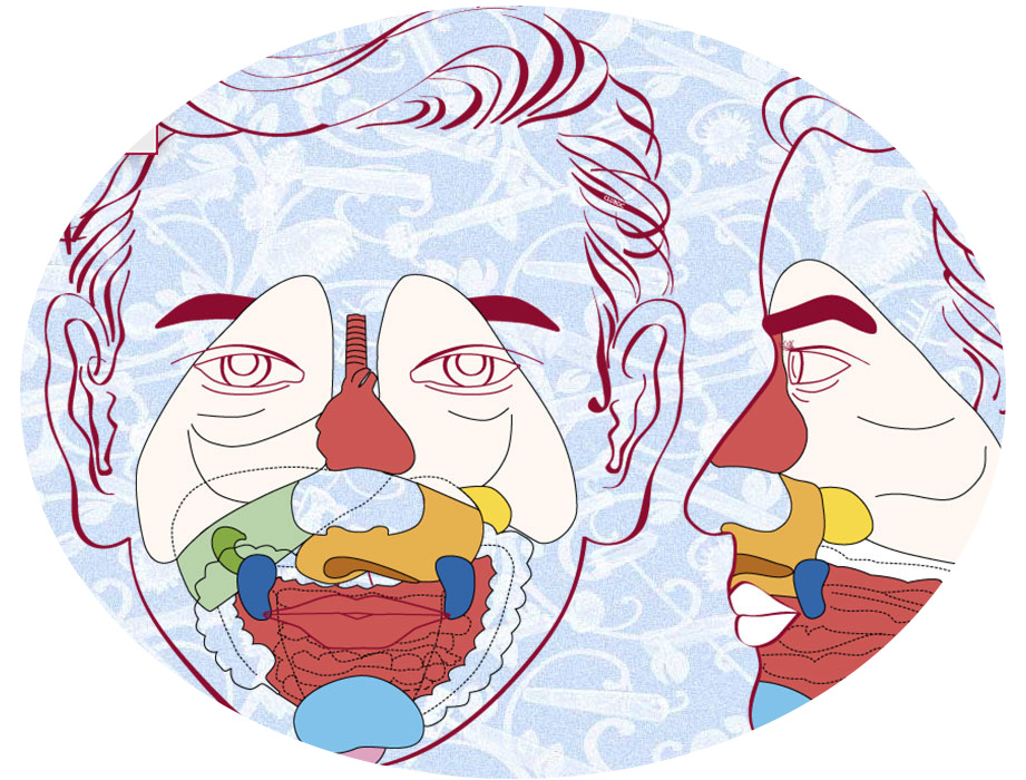 reflexologie faciale menton 06